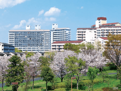 20191018_Lessons_from_Japan's_public_housing_TEFD-min